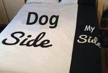 Dogs &