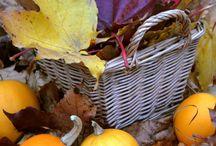 Autumn beauty / Красивая осень. Фотография, изделия ручной работы.