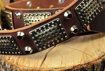 Designer Dog Collars / Designer Dog Collars - Pamper Your Pooch!