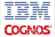 IBM Cognos / Warehouse Management Solutions