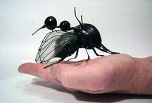 Hyönteisiä