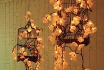 Garden - birdcage