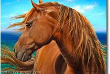 Hawaii Horses / Hawaiian horses, horse art, Pa'u riders, Paniolo, horses of Hawaii, etc. / by Susie Blackmon