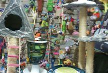 Produtos da Dog Dog & Cat Cat / Somos uma pet shop completa! Temos tudo para seu au-au ou miau! Rações, brinquedos, petiscos, roupinhas e muito mais!