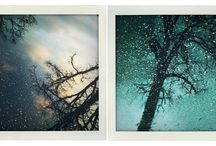 Favourite photos / by Katheryn Lee