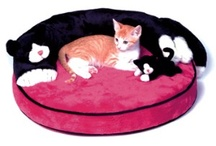 Cats & Dogs bed toys ....