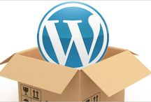 WordPress / Everything related with WP goes here, with honor and pride! Knows nothing... Allways learnig!