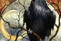Blackest bird