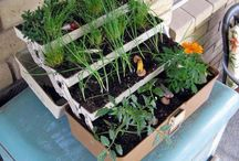Planter Project