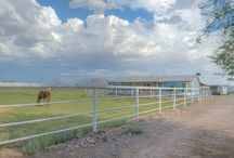 Arizona Horse Properties / Check out horse properties for sale in Arizona