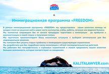 """FREEDOM :: IMMIGRATION / Иммиграционная программа  Юридическая компания  """"КАЛИТА и партнёры"""""""