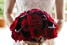 Valentine Bride / Inspiration for the book.