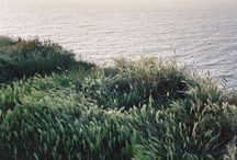landscape / outdoors