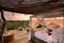Cabane safari