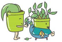 Gardening Skills