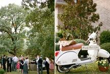 Photographers / by Catholic Marriage Prep