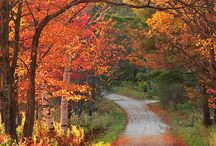 Green mountain state / Seasons and places to visit  / by Adelitas Jewelry