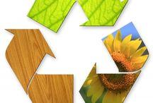 Eco Organizing