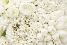White Weddings / Gorgeous White Wedding Details / by Style Unveiled®
