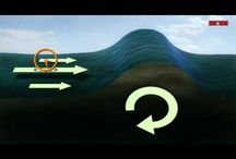 Pavilhão Surf / Algumas pesquisas sobre um pavilhão dedicado ao esporte do surf para o projeto da faculdade
