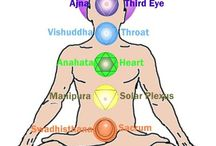 Therapies / Natural therapies are a great support to maintain a healthy body. We will give some great information here.