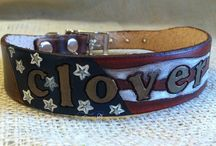 USMC leather dog collars and dogs