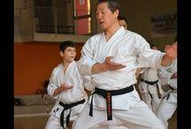 KarateShoto
