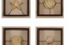 Shell Displays