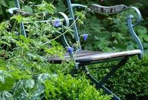 puutarhat / gardening