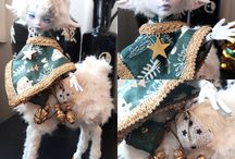 Doll Custom