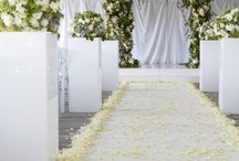 Chuppahs and Ceremony Structures / No longer only requested for religious reasons, chuppahs and ceremony structures create the perfect backdrop for wedding ceremonies. Here are a few of our beautiful creations.