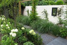 tuin / nieuwe tuin ideeen