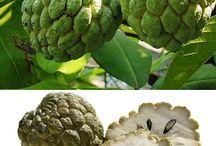 Frutos de Choroni
