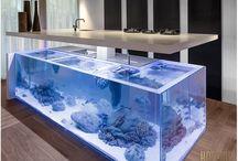 Aquario em casa