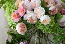 Gardening: Floral Arrangements