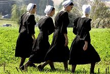 Sweet Amish Life