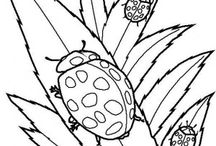 Ladybugs coloring book /  Ladybugs coloring pages