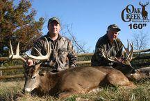 Oak Creek 2008