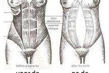 buikspieren na zwangerschap.