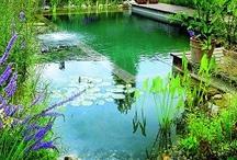 garden house water