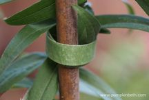 Plant supports and methods to tie in plants