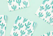 サボテン Cactus