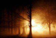 Mists