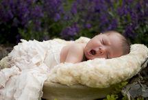 Van Epps Photography / Newborn Photography, Family Photography, Children Photography