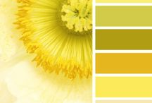 Color Palettes / Color combinations that I am currently loving.