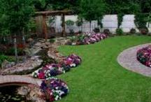 Backyard Ideas / by Melissa D.