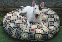 Pet Sleeping Quarters / by Hot Dog Collars
