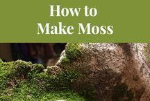 how to make moss on concrete