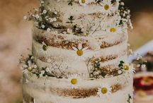 wesele polna zdrój
