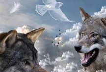 The Wolf-my animal spirit / The Wolf is my animal totem. I truly believe that they walk with me.